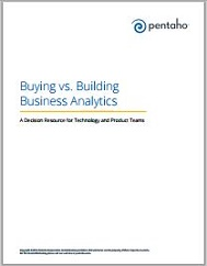 Buying vs Building Business Analytics